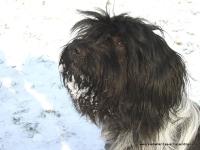 Briana im Schnee 08